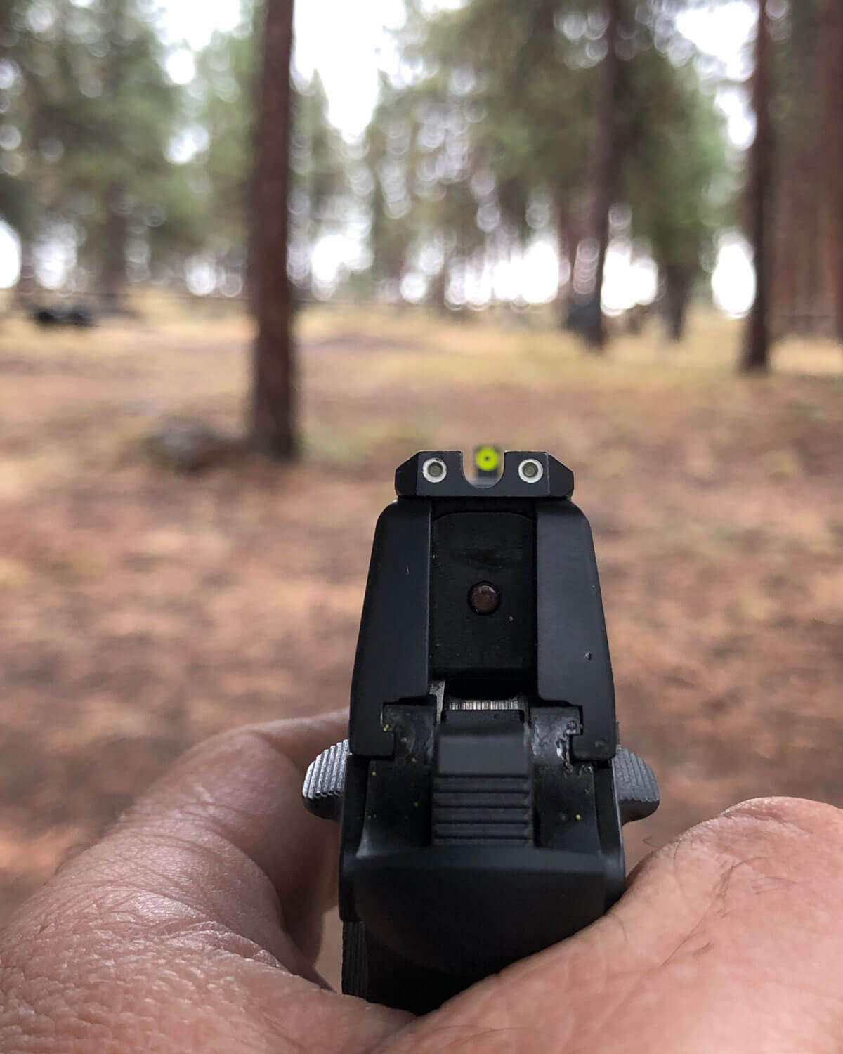 Sight alignment is critical when shooting long range targets with the Springfield 911