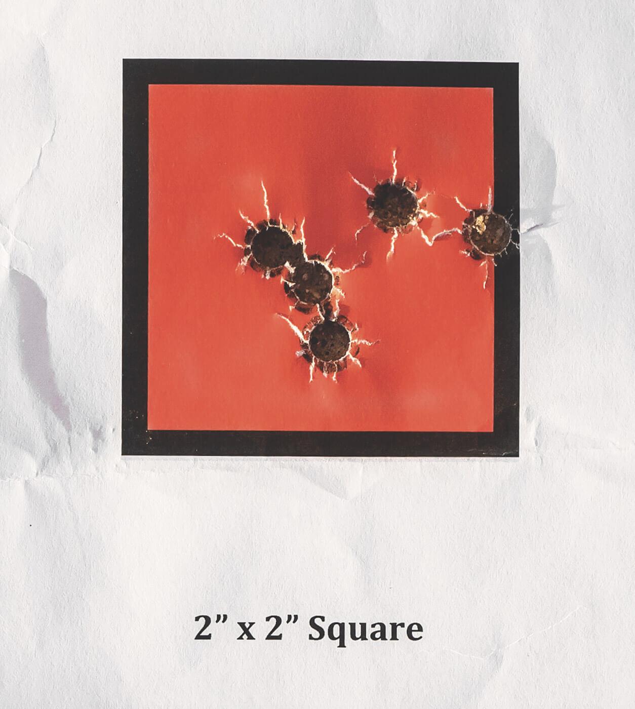 Five shot group on target