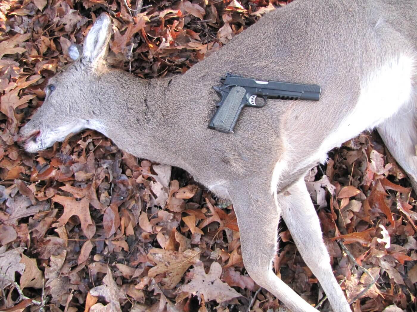 Handgun hunting with Springfield Armory 1911 TRP