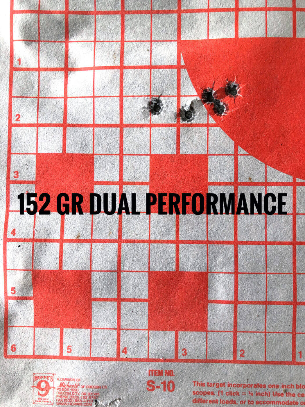 Springfield M1A Loaded accuracy target