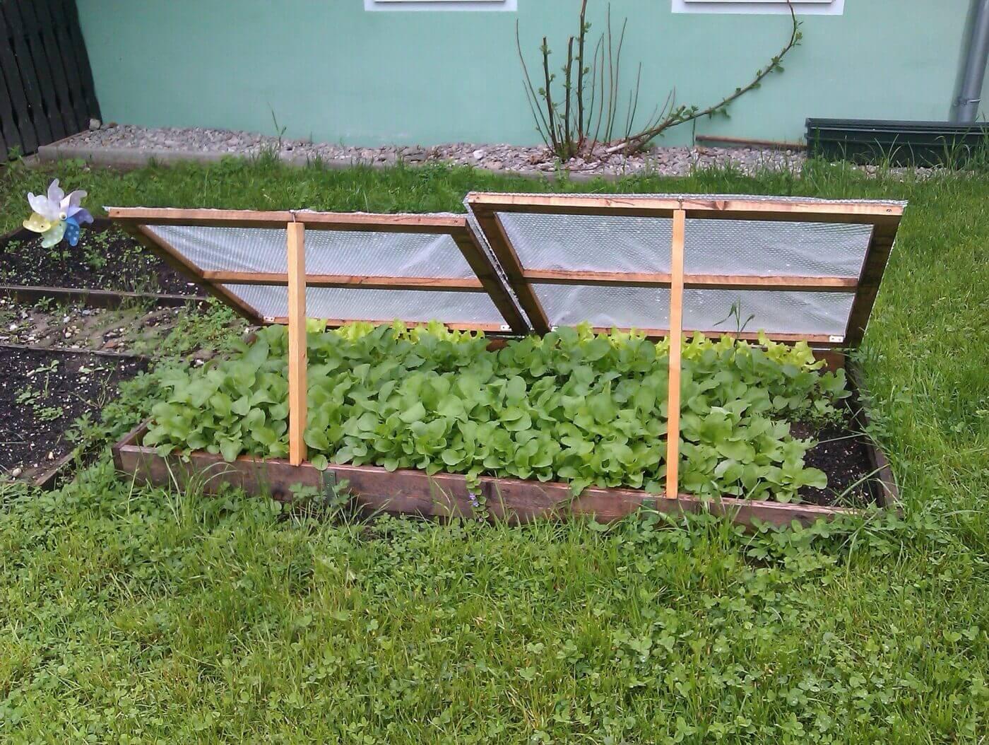 Cold frame for gardening
