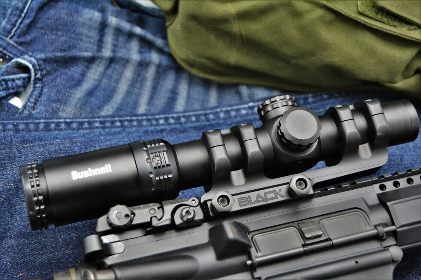 SAINT with Bushnell scope