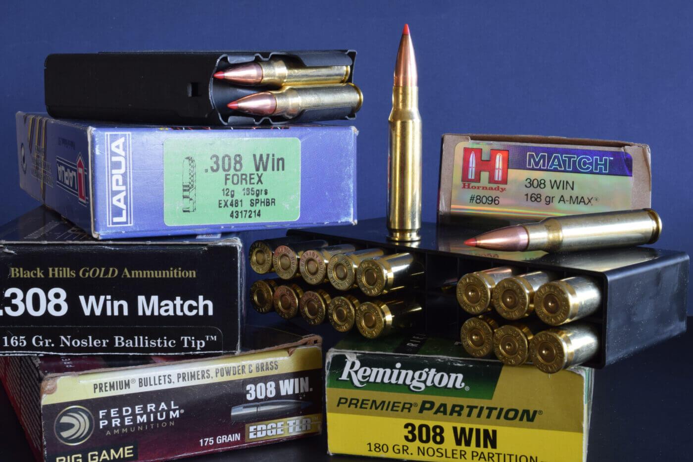 .308 hunting ammunition