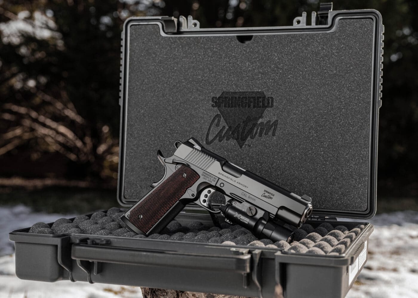 Springfield Armory Professional Light Rail 9mm pistol in carrying case