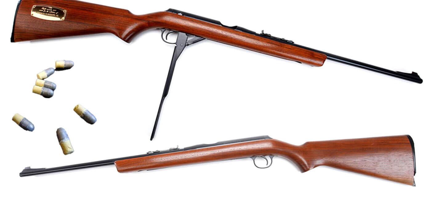 Daisy VL and ammo