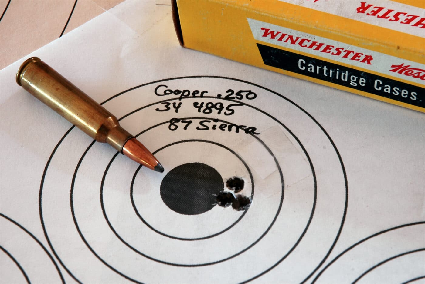 Testing target