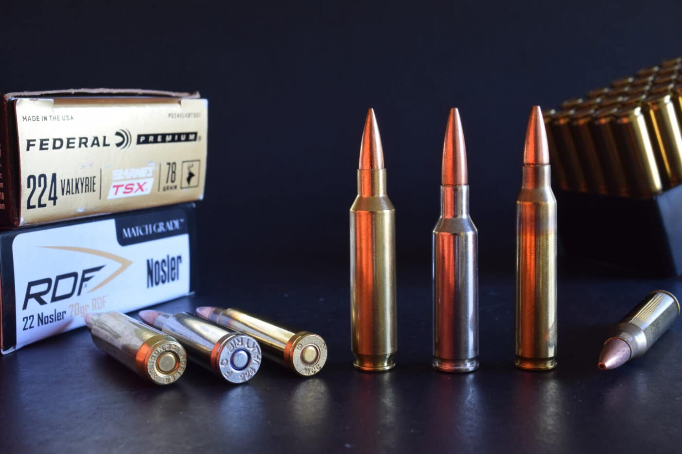.22 caliber hunting rounds for AR rifles