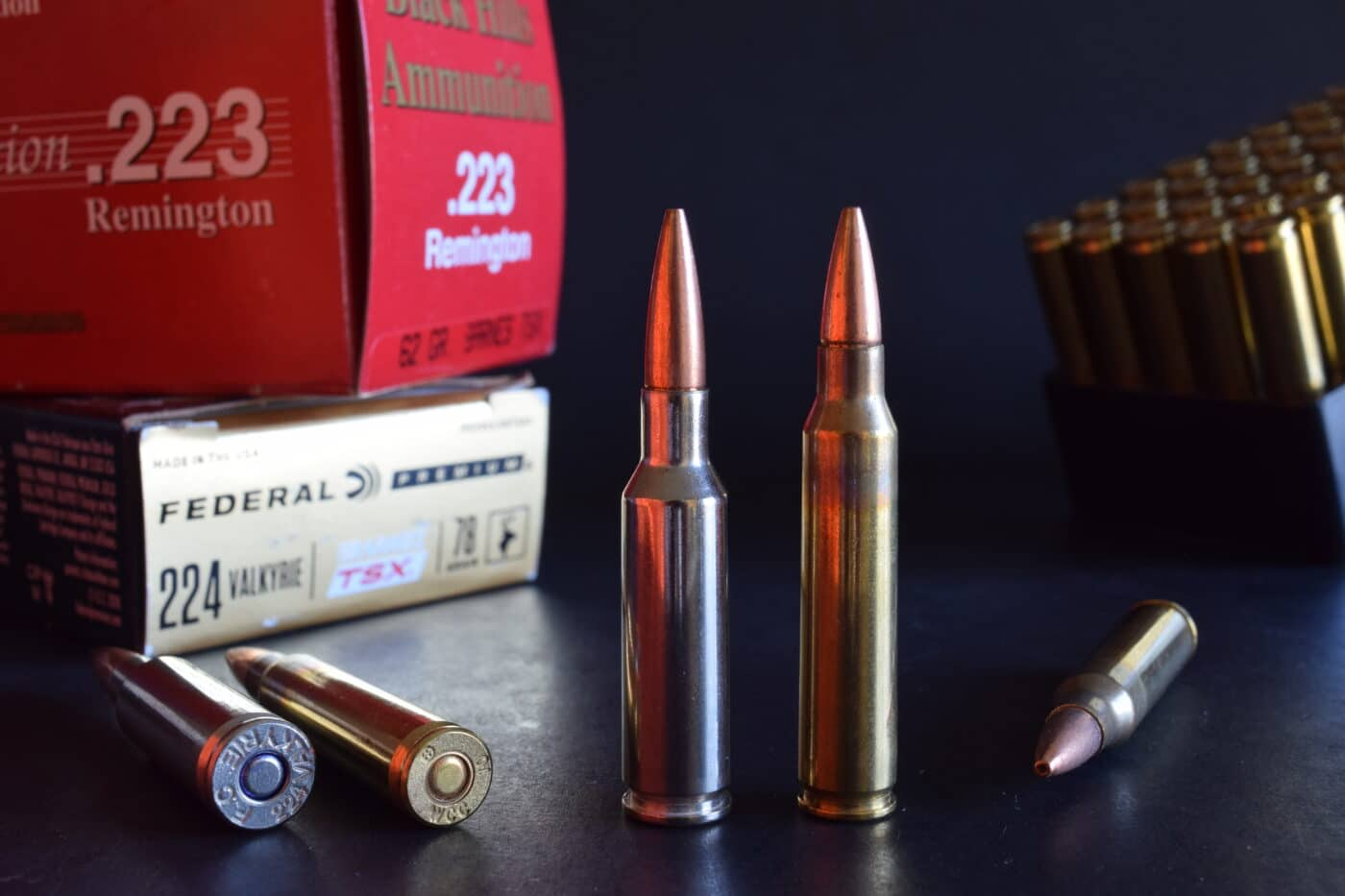 .224 Valkyrie for hunting