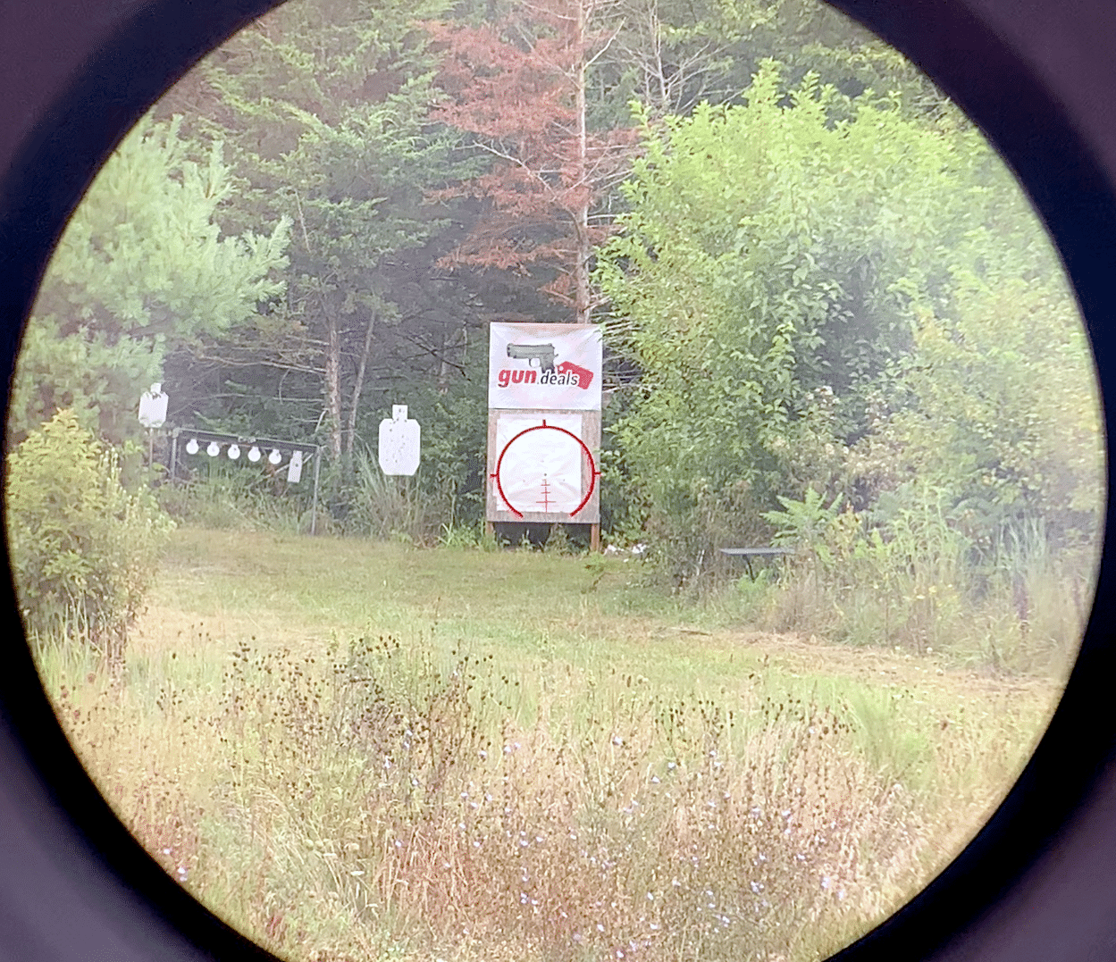 View through AT3 Tactical prism scope