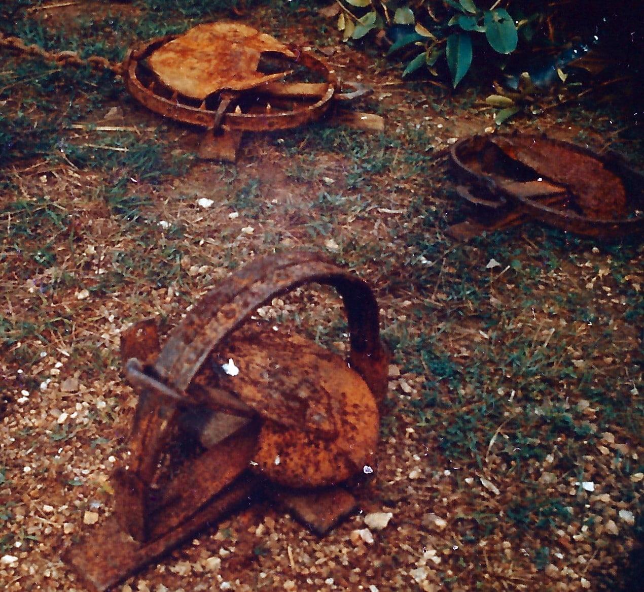 Bear traps found in Vietnam by the USMC