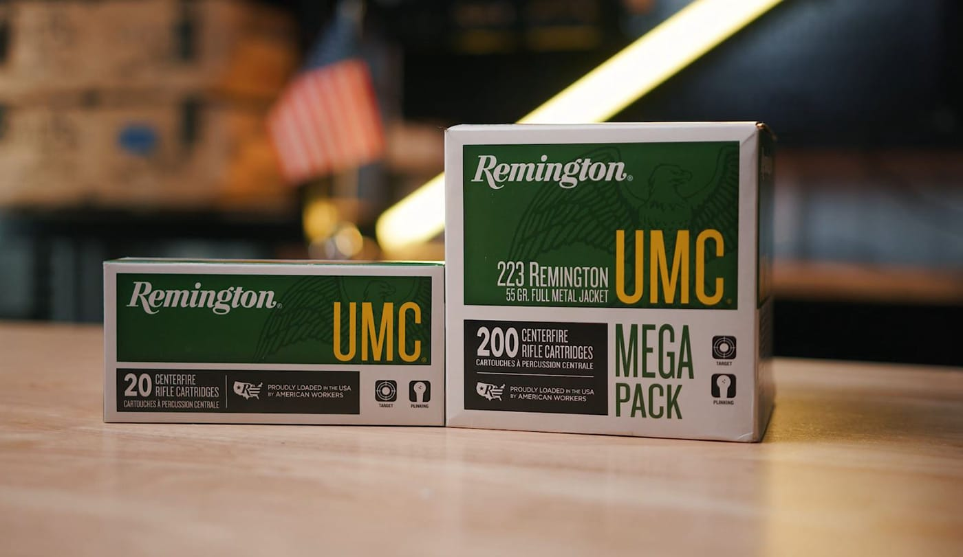 Remington 223 ammo